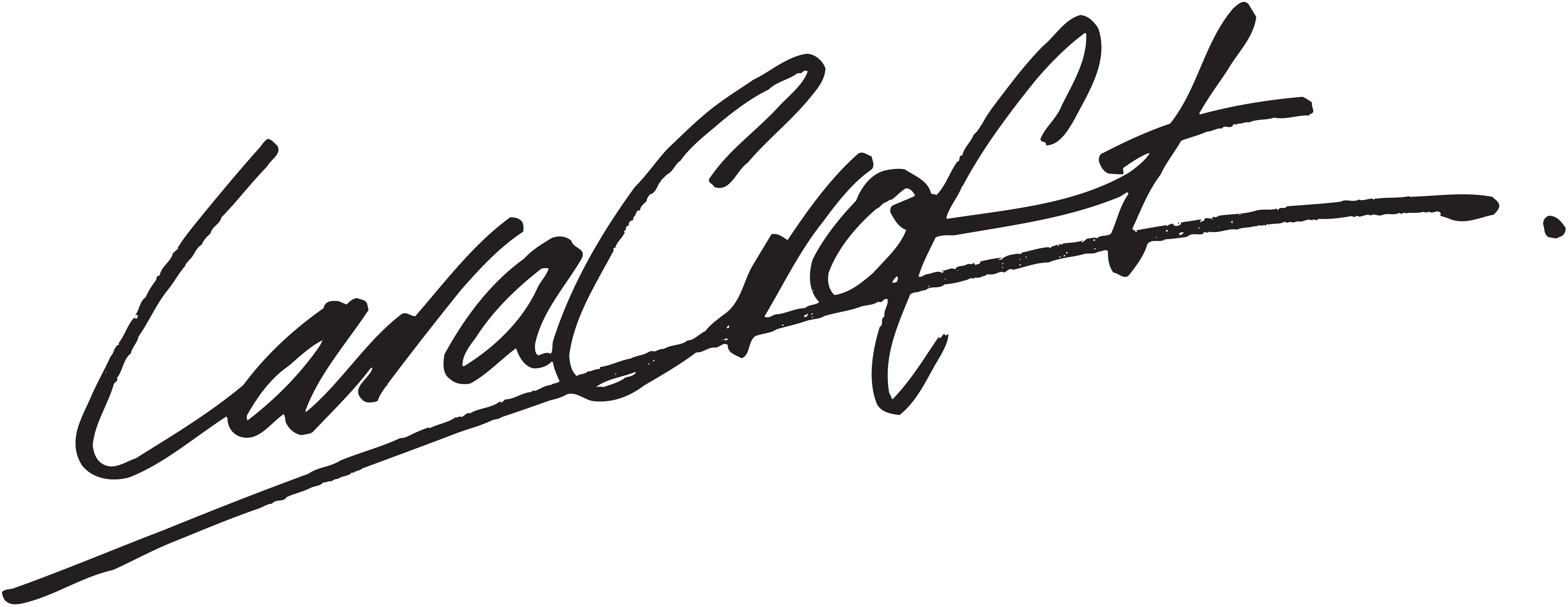 Signature nsi for Lee signature homes